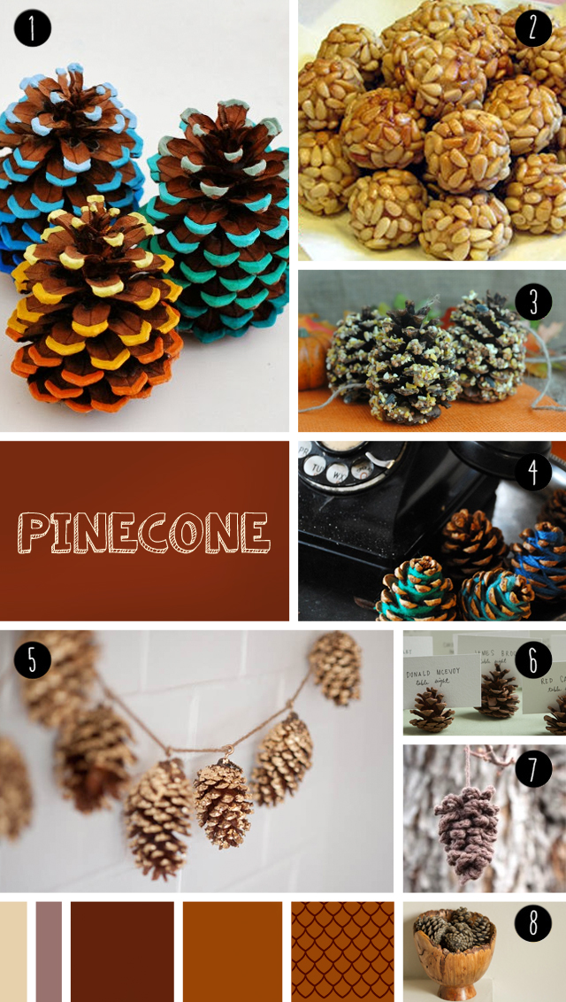 "8 pinecone DIY seen at ""I am a mess"""