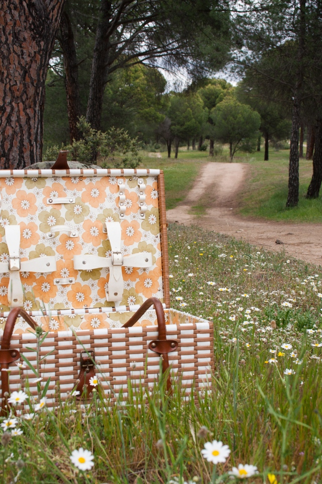 Cesta de picnic vintage (visto en I am a Mess)